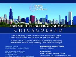 2019 MS Summit